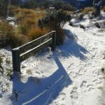 Snow day on the Sunrise Track Ruahine Ranges June 2015